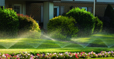 image irrigation green lawns